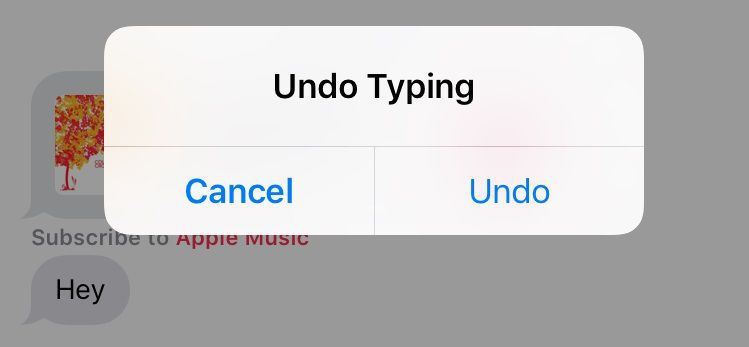 how to undo your delete text