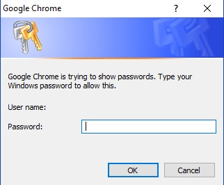 Import-or-export-passwords-in-Google-Chrome-login
