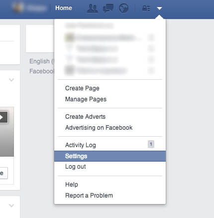 Remove Facebook Browser History Ads on the Web - Settings Option